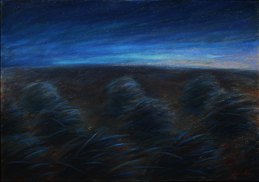 Joke van den Berg - Tussocks - Pastel on Paper